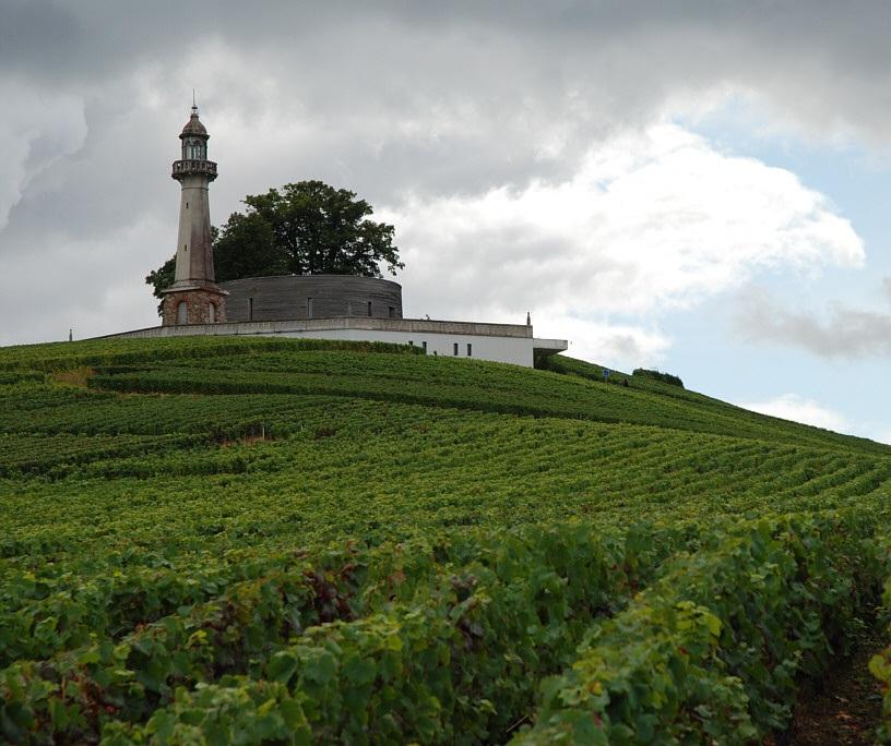 Champagne Barbier-Roze Musée de la Vigne Le Phare de Verzenay